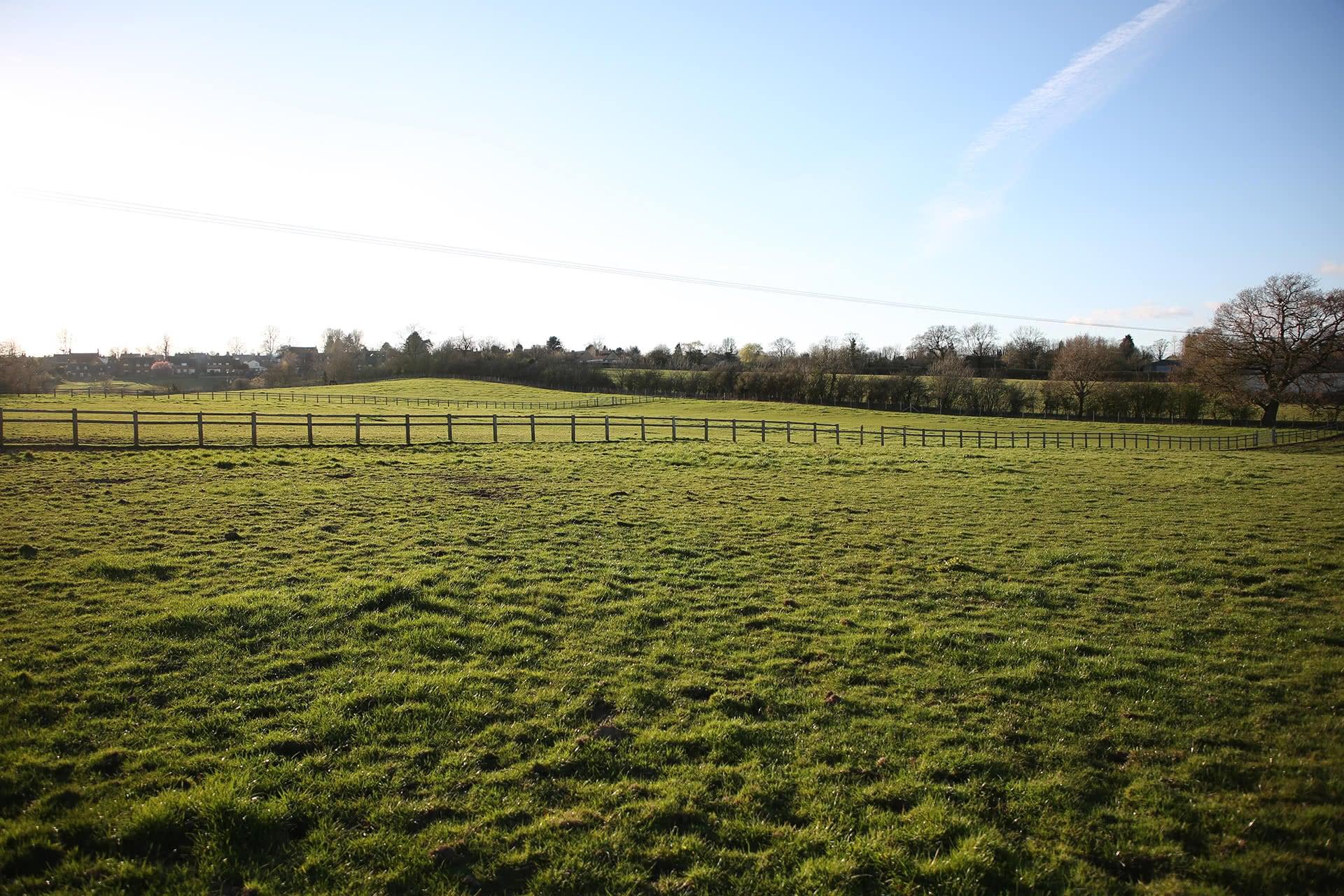 Eydon fields